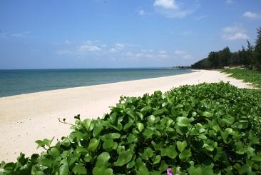 Toàn cảnh về dự án Ocean Dunes tại Phan Thiết
